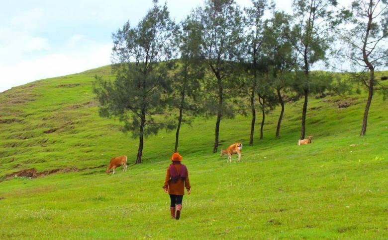 Sobat PepNews Wajib Tahu tentang Tempat Wisata di Kabupaten Ini