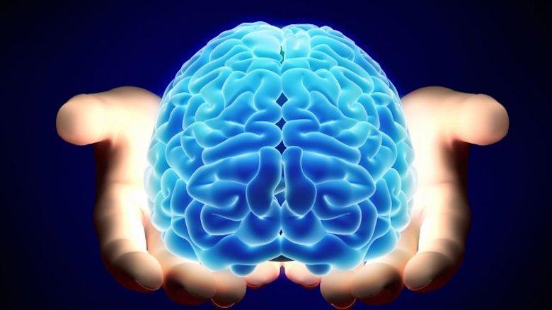 Sekelumit Cerita tentang Otak