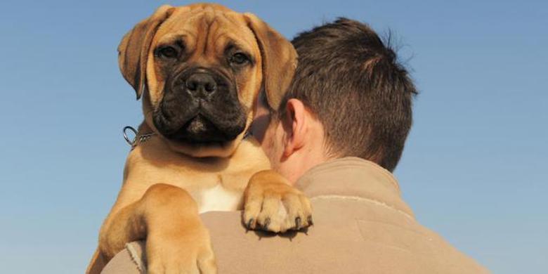 Anjing Saja Setia, Masak Kamu Enggak!?