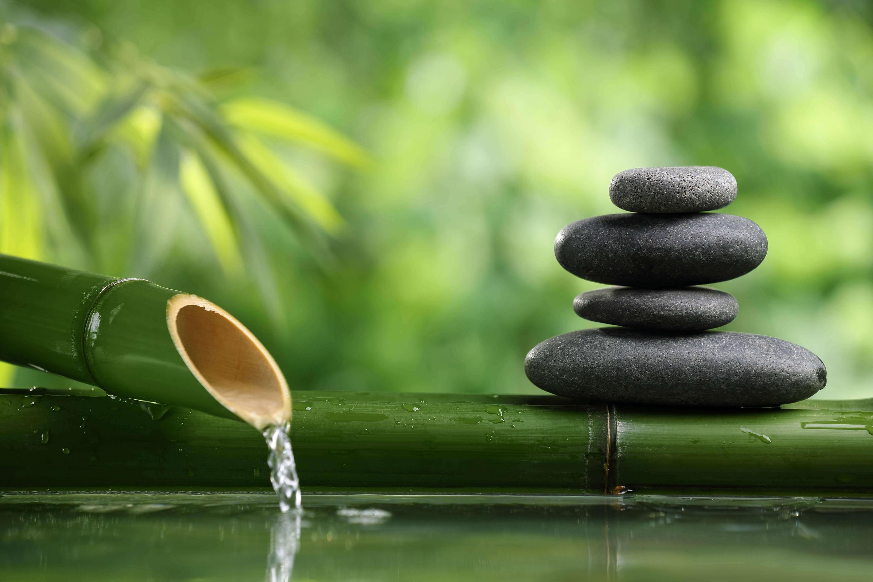 Dua Aliran Berpikir Kuno, Stoa dan Zen untuk Hidup Kita