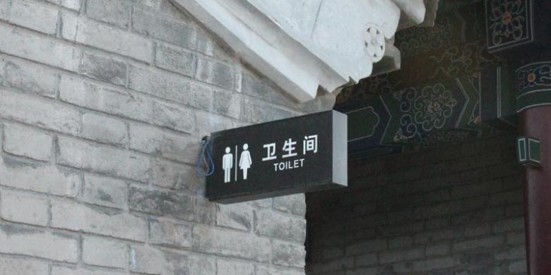 Dahlan Iskan Menjawab (2): Revolusi Toilet dan Kereta Peluru Tiongkok