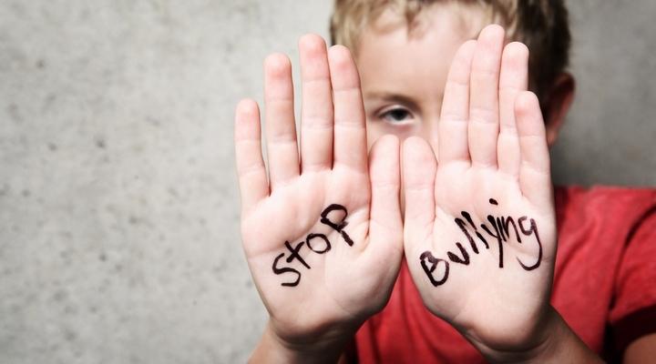 Nikmatnya Saling Bully di Ajang Pilpres 2019